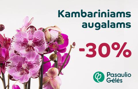 Kambariniams augalams – 30%